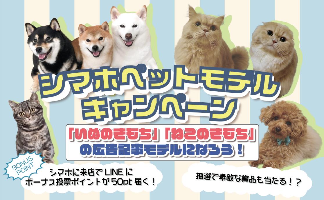 スペシャルペットモデルキャンペーン